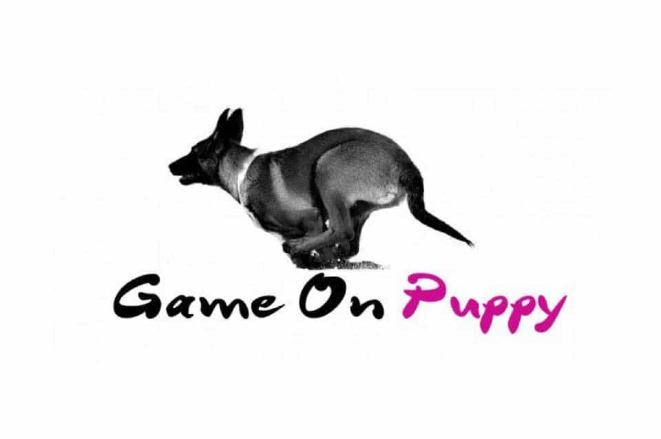 Träningshelg med Jessica på Game on Puppy 9-10 nov